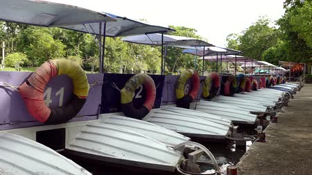 Colorful pedal boats parked in a long line at pier in park Dostupné videozáznamy