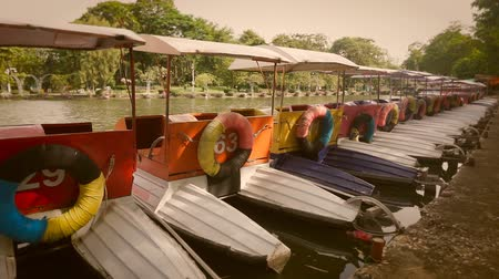 Colorful pedal boats parked in a long line at pier in park.  Processed with vintage style.