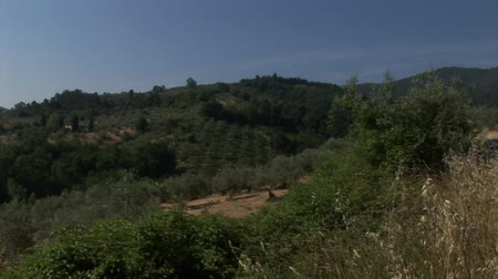 kırsal : Hills of the Tuscan countryside Stok Video