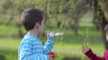 tarde : Two sweet boys, having fun with soap bubbles in the park on a sunny spring afternoon