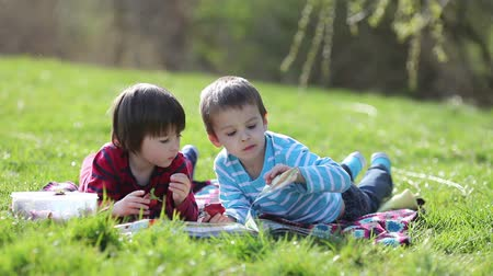 enciclopédia : Two adorable kids, reading book and eating strawberries at the park on a sunny spring afternoon Stock Footage