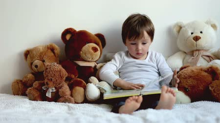olvasás : Boy, reading a book, educating, teddy bears around him Stock mozgókép