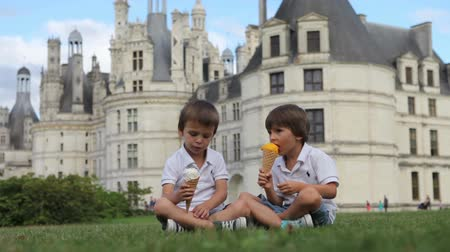 conversando : Funny children kids, little boys, eat ice cream on a lawn in the park in front of a big castle in France, Chambord Vídeos
