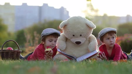 наслаждаться : Two adorable little boys with his teddy bear friend in the park on sunset, nice back light