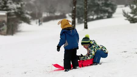 sporty zimowe : Two kids, boy brothers, sliding with bob in the snow, wintertime, happiness concept Wideo