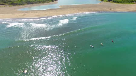 взморье : aerial view of surfer and waves Стоковые видеозаписи