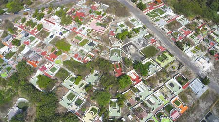 芝生 : Aerial view of graveyard on the mountain. Taiwan.