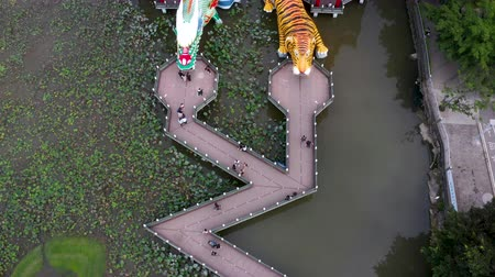 cienie : Aerial view lotus pond and Dragon and Tiger Pagoda, Kaohsiung, Taiwan. Asia. Wideo
