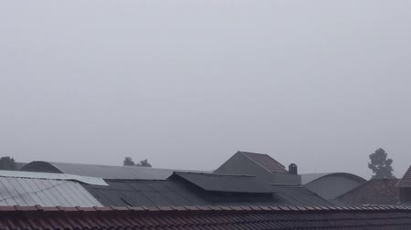 гром : a view of raining on top of residential rooftop and trees with raining backsound Стоковые видеозаписи