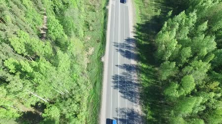 bok : Aerial view. Cars are driving along the road. Sunny forest around