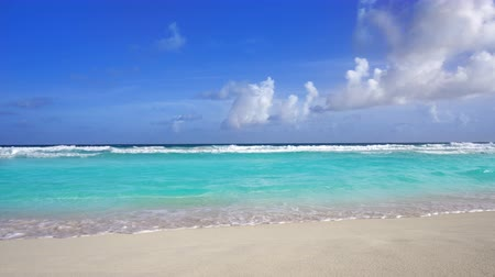 pastoral : Tropical beach in Caribbean sea with turquoise aqua water