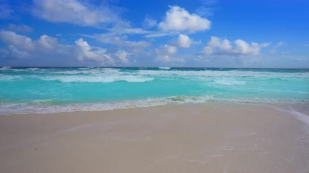 Tropical beach in Caribbean sea with turquoise aqua water