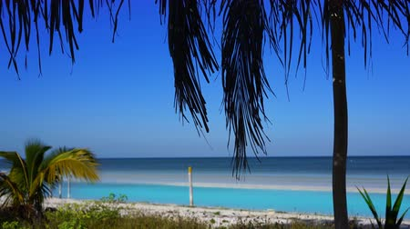 Holbox island beach in Caribbean sea of ??Mexico Stok Video