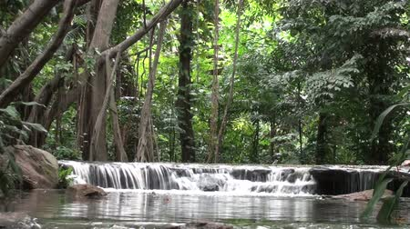 vista frontal : Small jungle waterfall, front view. Taken in Kings (Rama IX) Park in Bangkok. Stock Footage