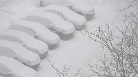 cold : Cars cover in snow on a parking lot in the residential area during snowfall