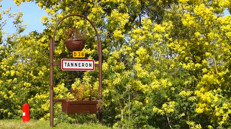 Road sign of Tanneron, small town in Provence-Alpes-Cote dAzur, France. Part of Road of mimosa