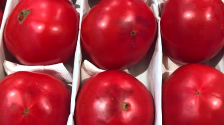 Red Fresh Ripe Tomatoes selling in a supermarket. Horizontal 4k video Dostupné videozáznamy