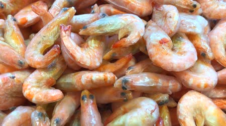 câmara : Close up of frozen whole tiger prawns on ice. The supermarket scene. Video 4K