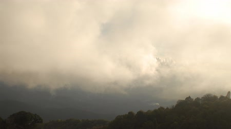 Cloud moving on mountain in Northern of Thailand. Dostupné videozáznamy