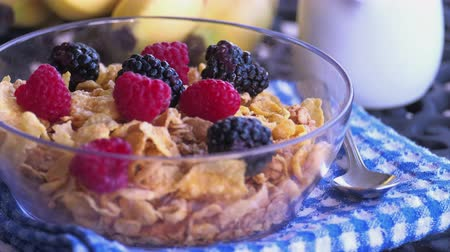 клюква : Berry fruits on oat meal in a bowl
