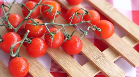 tomate cereja : Close up of cherry tomato in a bow Stock Footage