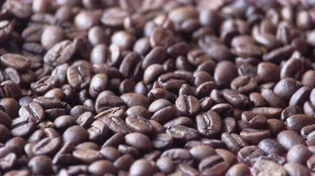 Close up of fresh and raw coffee beans