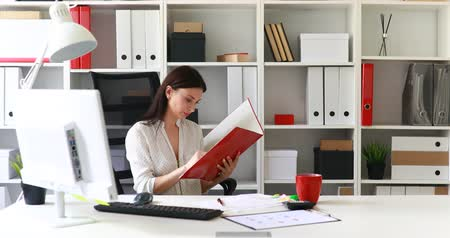 paper airplane : businesswoman in white blouse examining documents in folder Stock Footage