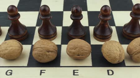 usual : Chess and nuts Stock Footage