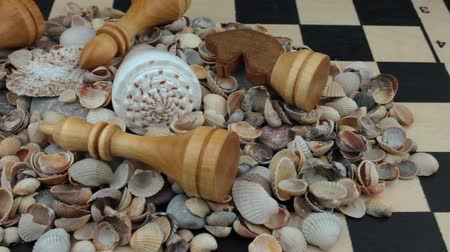 sivilceli : Chess, seashells and stones