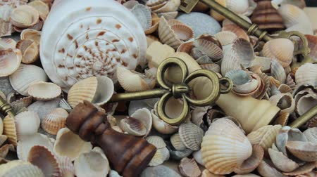 sivilceli : Close up shells, chess and keys