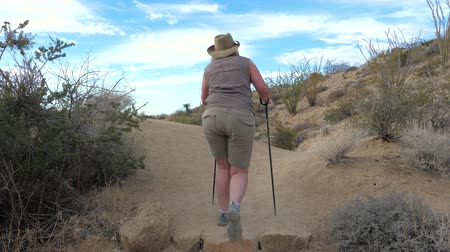 joshua : Active Woman With Trekking Poles Hiking In The Mojave Desert Park Joshua Tree Stock Footage