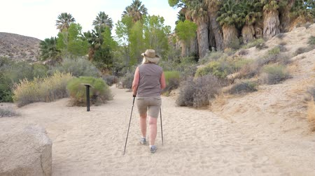 joshua : Active Woman Hiking On The Oasis With Palm Trees In The Mojave Desert