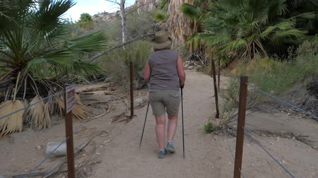joshua : Active Fat Mature Woman Hiking On The Oasis With Palm Trees In The Mojave Desert Stock Footage