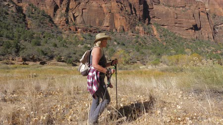 boulders : Active Woman With Trekking Sticks Hiking In Zion Park In The Background Rocks Stock Footage
