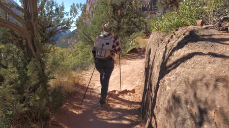 boulders : Tourist Hiking In Mountains Active Woman Walks In Zion Park Slow Motion 4K Stock Footage