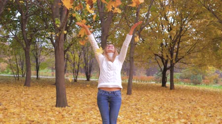 pulóver : Cute Woman Throwing Autumn Leaves Having Fun Laughing In Colorful Forest Foliage Stock mozgókép