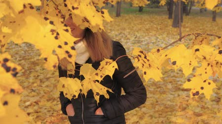 hides : Playful Woman Hiding In Branches Tree With Yellow Autumn Foliage Gets Pleasure Stock Footage