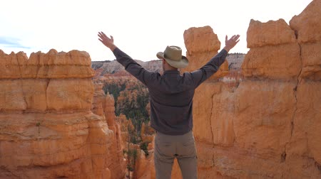 braços levantados : A Man Admires The Nature Of The Bryce Canyon, Raises His Hand And Turns Aside Vídeos