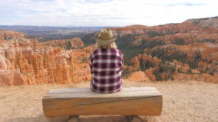 enjoys : Woman Sits On The Log And Looks View At A Beautiful Panorama Of The Bryce Canyon Stock Footage