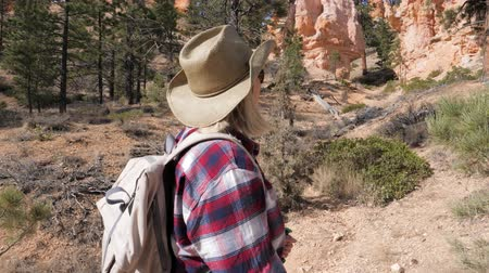 přehoz : A Tourist Woman Looks Up At The Great Rocks Of The Bryce Canyon And Pine Trees