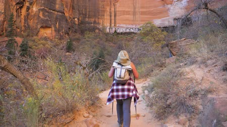 koróna : Woman Hiking To A Huge Vertical Monolithic Wall Of Mountains In Red Rock Canyon