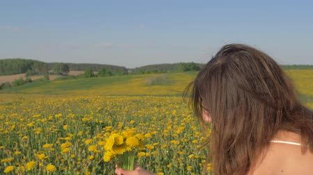 szag : Woman Picking Flowers And Gather In Blooming Field Bouquet Of Yellow Dandelions Stock mozgókép