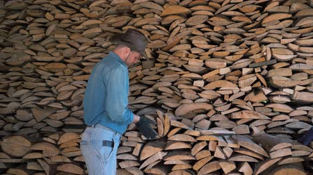 feixes : Portrait Of A Manly Man In A Cowboy Hat In Warehouse Holding A Bunch Of Firewood Stock Footage
