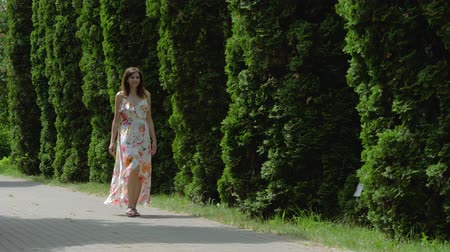 sandalet : Woman In A Dress Walking On Alley Of Decorative Cypress On A Sunny Summer Day