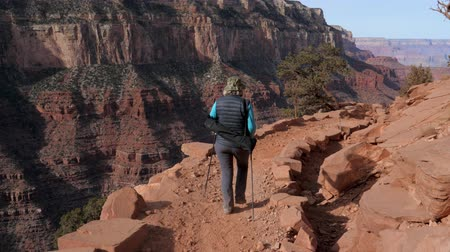 wspinaczka górska : Active Woman Hiking In The Grand Canyon
