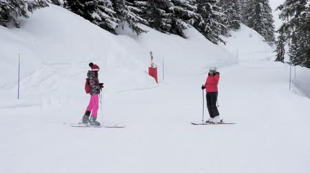 admires : Skiers Standing On The Slope Show Each Other The Route Where To Skiing