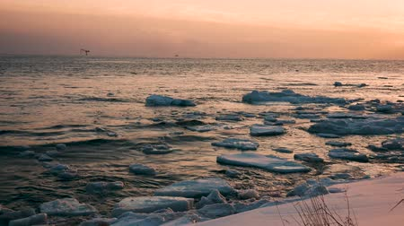 escarlate : Scarlet Sunset On The Sea With Ice Floes In Winter Stock Footage