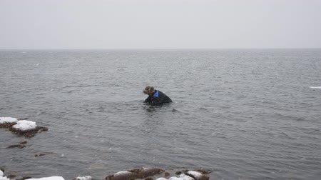 spearfishing : Fisherman With A Fishnet Walks Along The Beach In Winter And Collects Delicacies