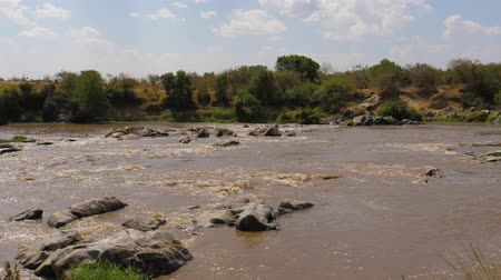 câmara : A View Of The Rapids Of The Mara River With Brown Water In Africa