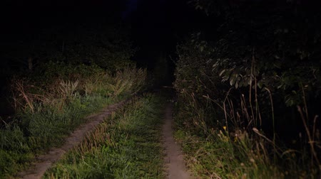 horror : Driving On Bad Rural Road At Night In Light Of The Headlights In The Bush Wideo